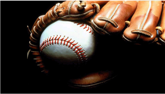Baseball Glove Oil